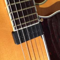 Guitar Pickups - Bartolini Pickups & Electronics